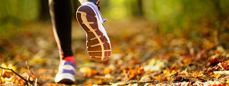 Laufschuhe im Herbstwald