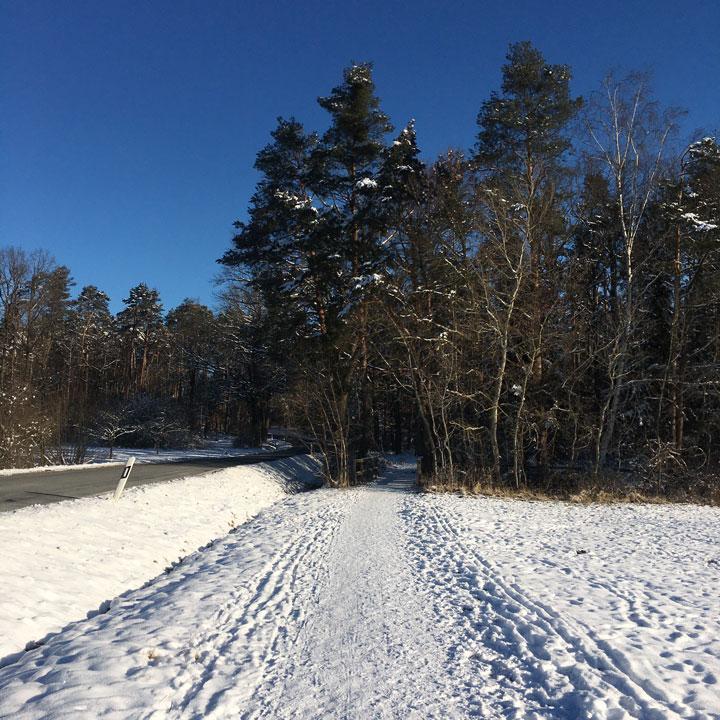 Verschneiter Weg in stahlendem Sonnenschein